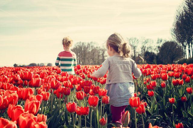 Bambine a contatto con la natura, in un campo fiorito di tulipani - marmocchio