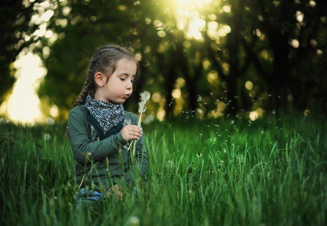 Scuola natura, una bambina gioca soffiando un dente di leone - marmocchio